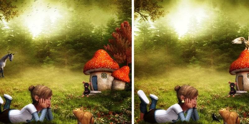 головоломка найди 9 отличий: Девушка в лесу