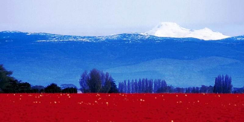 тест географический - столицы России